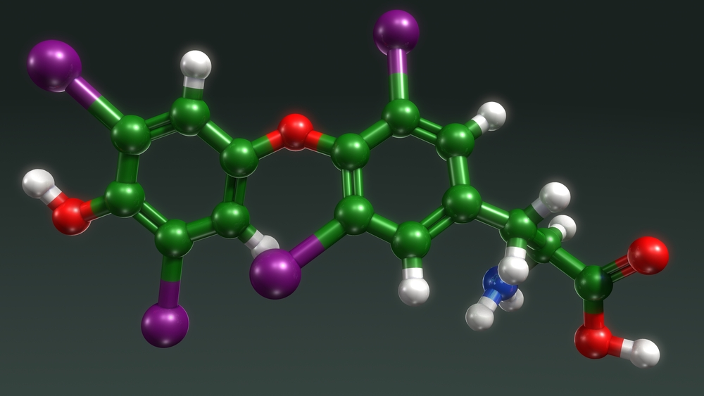 Why Are Peptides Important?